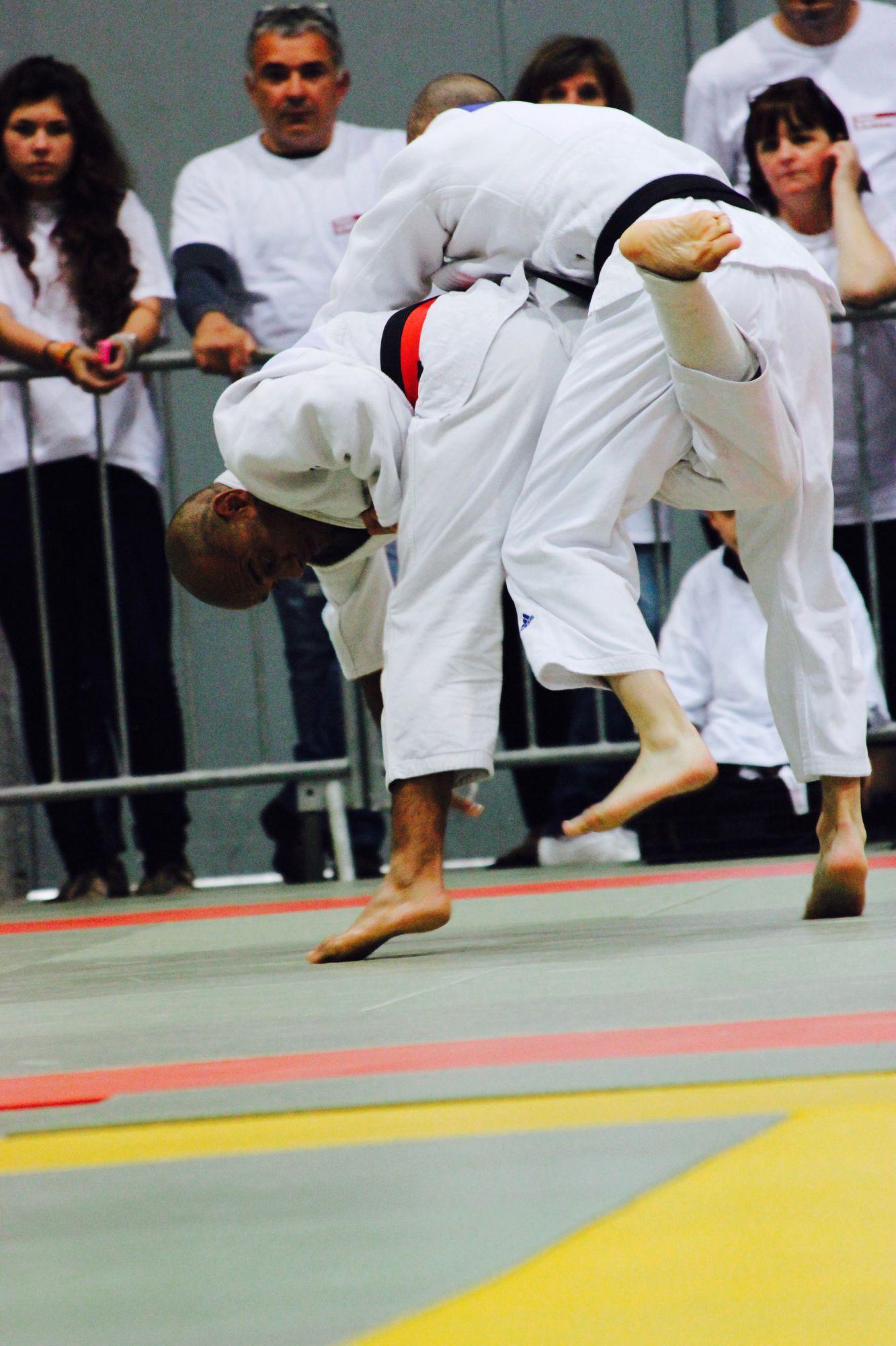 Master d'Artagnan 2014