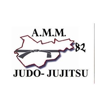 Entraînements de judo vétéran à Montauban